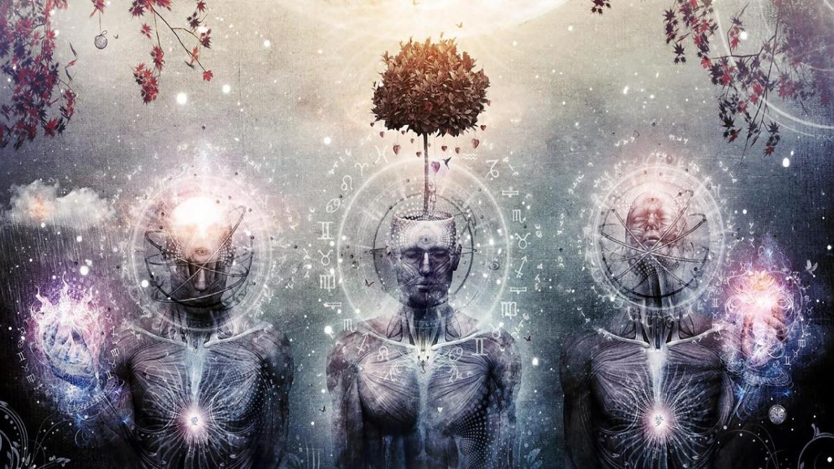 eyes-trees-zodiac-human-body-cameron-gray-1280x720-28276